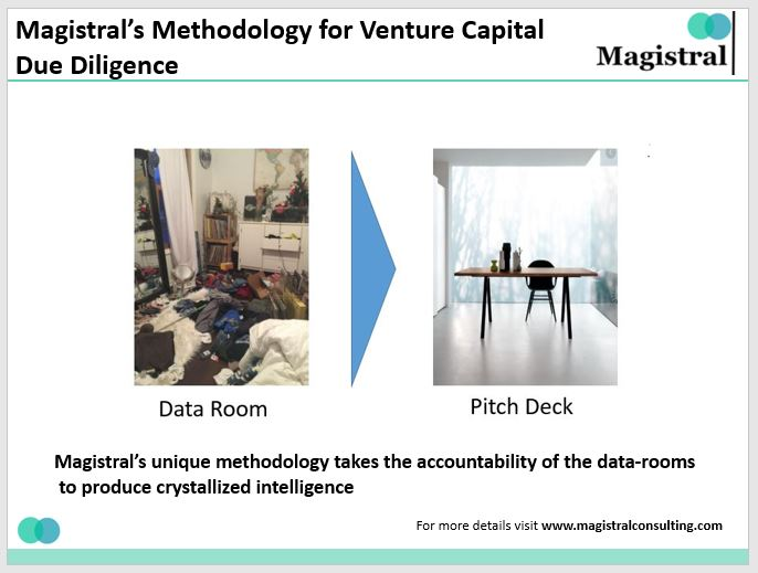 Magistral's Due Diligence Process